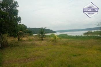 Terrain à vendre de 50 hectares à Bingerville Aghien